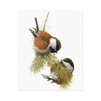 組の松の木のクリに支えられる《鳥》アメリカゴガラ キャンバスプリント