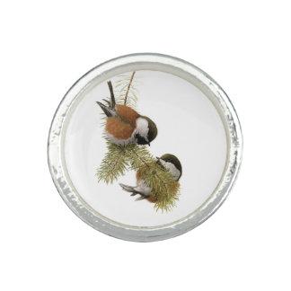 組の松の木のクリに支えられる《鳥》アメリカゴガラ 指輪