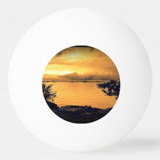 組み立てられた海景 卓球ボール
