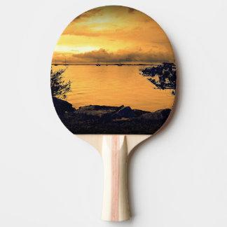 組み立てられた海景 卓球ラケット