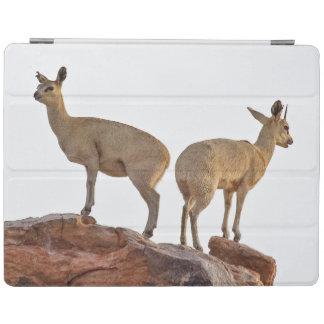 組Klipspringer (Oreotragus Oreotragus) iPadスマートカバー