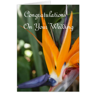 結婚式のお祝いの極楽鳥 カード