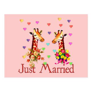 結婚式のキリン ポストカード