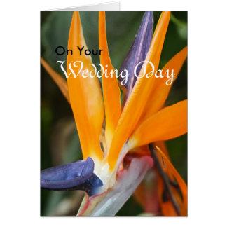 結婚式の挨拶状極楽鳥 カード