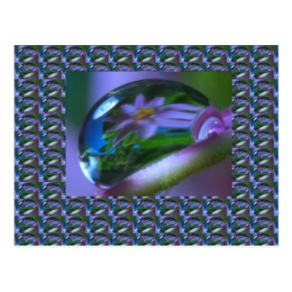 結露の花の反射。  低価格のギフト ポストカード