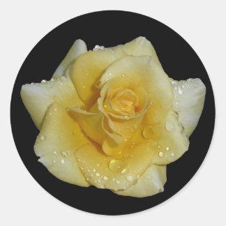 結露の黄色バラ ラウンドシール