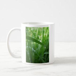 結露 コーヒーマグカップ