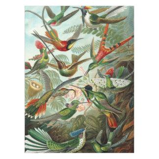 絵を描かれる描かれる12匹のアメリカのぶんぶんいう鳥の品種 テーブルクロス
