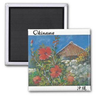 絵画の磁石のハイビスカスおよび沖縄の家 マグネット