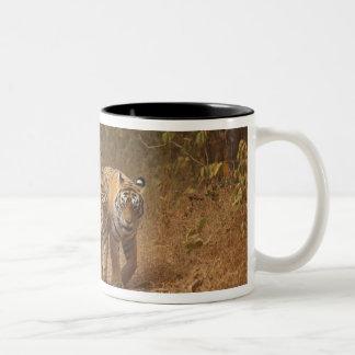 絶えず動いた王室のなベンガルトラRanthambhor ツートーンマグカップ