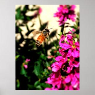 絶えず動いた蜂 ポスター