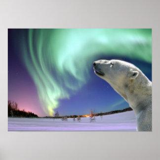 絶滅寸前の白くまを救って下さい ポスター