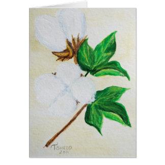 綿のボール植物の1 カード