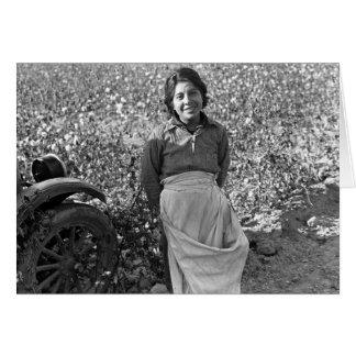 綿分野の隣の季節労働者 カード