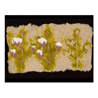 綿植物の郵便はがき ポストカード