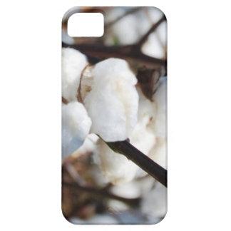 綿第2記念日のための花 iPhone SE/5/5s ケース