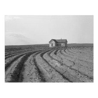 綿Fields 1938年 ポストカード