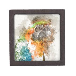 緑およびオレンジコンゴウインコの鳥 ギフトボックス