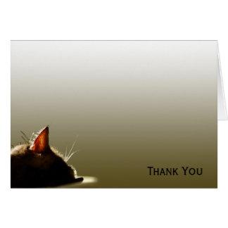緑および灰色猫の昼寝 カード