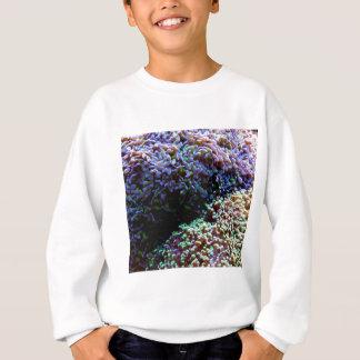 緑および紫色のanenomes スウェットシャツ