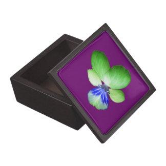 緑および青のパンジーの優れたギフト用の箱 ギフトボックス