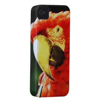 緑によって飛ぶコンゴウインコのオウムの鳥のクローズアップ Case-Mate iPhone 4 ケース