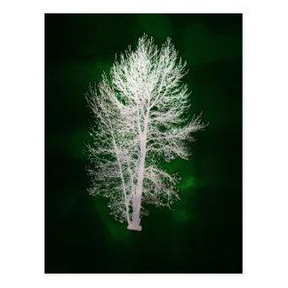 緑ののど金属木の郵便はがき ポストカード