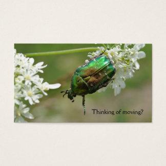 緑のばら色chaferの名刺 名刺