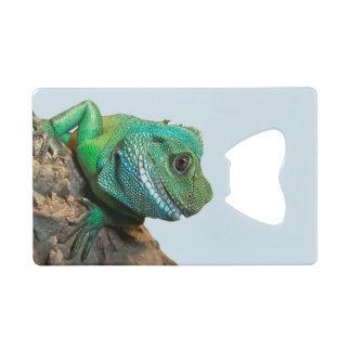 緑のイグアナ クレジットカード栓抜き