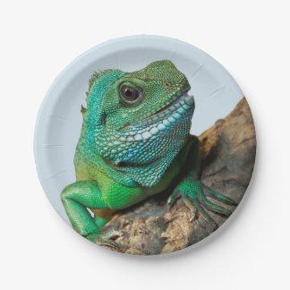 緑のイグアナ ペーパープレート