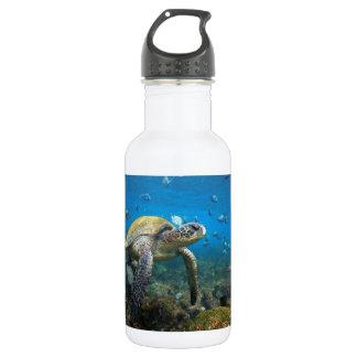 緑のウミガメの水中ガラパゴスの楽園 ウォーターボトル
