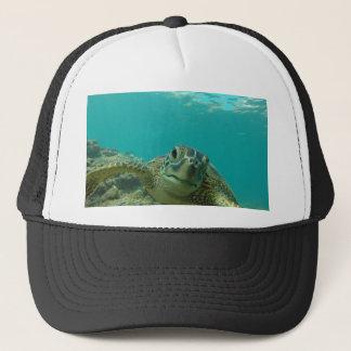 緑のウミガメ キャップ