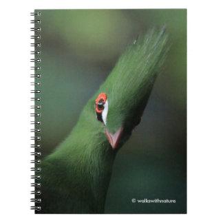 緑のエボシドリ科が質問をすることができれば ノートブック