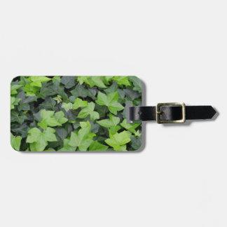 緑のキヅタの植物のプリント ラゲッジタグ