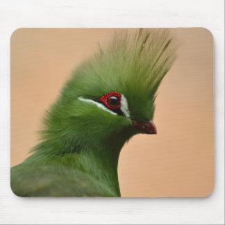 緑のギニーのエボシドリ科の鳥 マウスパッド