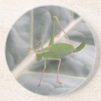 緑のコオロギのマクロコースター コースター