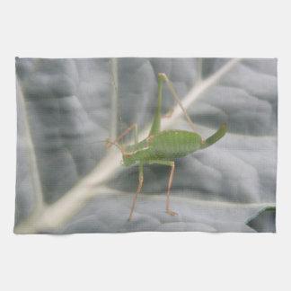 緑のコオロギのマクロ台所タオル キッチンタオル