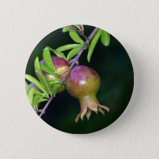 緑のザクロのフルーツ 5.7CM 丸型バッジ