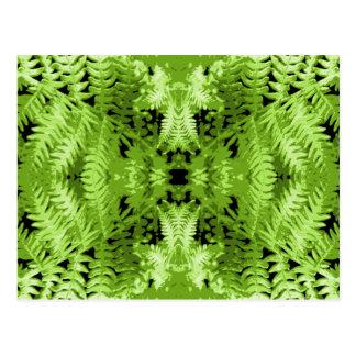 緑のシダの葉、デジタル芸術パターン ポストカード