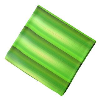 緑のタケセット バンダナ