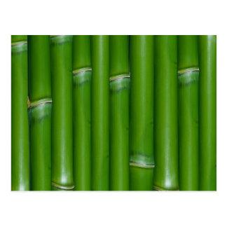 緑のタケ ポストカード