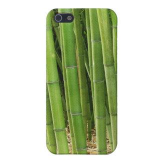 緑のタケ iPhone 5 CASE