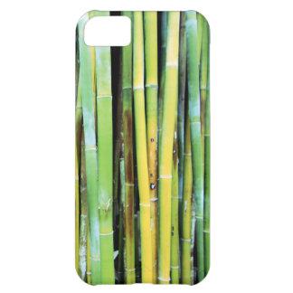 緑のタケiPhone 5の箱 iPhone5Cケース