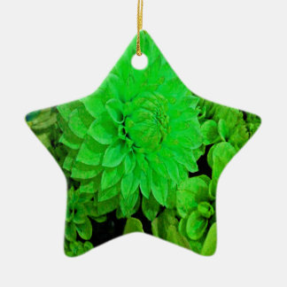 緑のダリアの束 陶器製星型オーナメント