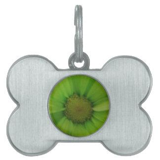 緑のデイジー ペットネームタグ