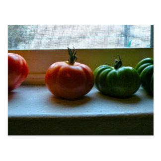 緑のトマト ポストカード