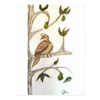 緑のナシ木のヤマウズラ ポストカード