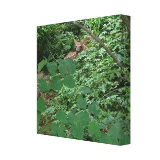 緑のハートの葉の子鹿 --- キャンバスプリント