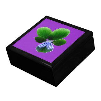 緑のパンジーのギフト用の箱 ギフトボックス