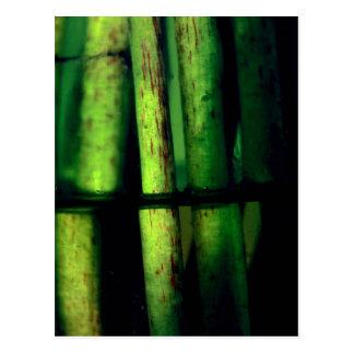 緑のマクロ ポストカード